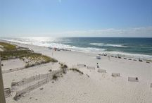 Gulf Village / Gulf Village 417 is a 3 bed 2 bath condo available for rent through Bender Realty in Gulf Shores, Alabama