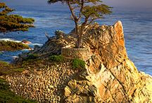 Monterey Peninsula Favorites / Where to eat, stay and play in the Monterey area / by Andrea Brandt