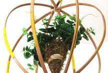 DIY Hoop/Hanging Plant Sculptures