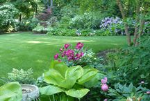 Perennial Gardens / Sun, Shade, and Mixed Exposure