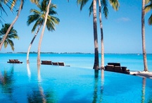 Pins by others / Pins of Shangri-La's Villingili Resort and Spa, Maldives posted by others / by Shangri-La 's Villingili Resort & Spa, Maldives
