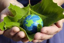 Międzynarodowy Dzień Ziemi / Światowy Dzień Ziemi – to nazwa akcji prowadzonych corocznie wiosną, których celem jest promowanie postaw ekologicznych w społeczeństwie. Organizatorzy Dnia Ziemi chcą uświadomić politykom i obywatelom, jak kruchy jest ekosystem planety ludzi. Na obchody składa się zwykle wiele wydarzeń organizowanych przez różnorodne instytucje.