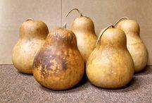 Gorgeous Gourds