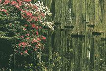 Wabi Sabi / Nothing lasts, nothing is finished, nothing is perfect. Good explanation of Wabi Sabi http://www.gardenshoponline.com/blog/?p=186