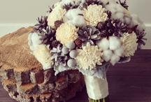 Bouquet of cotton