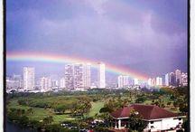 ☂☂Rainbows☂☂ / I love rainbows.  God promised He would never flood the earth again, the sign is His beautiful rainbow.