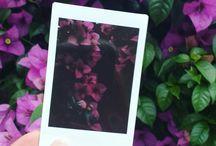 instax / fotos de um universo paralelo, olhar pela lente de uma pequena câmera, minha instax mini8