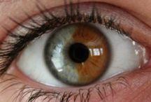 Ogen / Ontdek artikelen over ogen en oogkleur. Hoe uniek is jouw oogkleur?