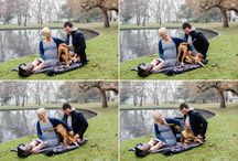 Maternity sessions with dogs