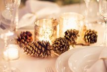 Feeling Festive / Holiday Party Ideas, decorations, recipes, gifts