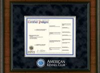AKC Frames / Church Hill Classics offer a variety of American Kennel Club pedigree frames, AKC registration frames, photo frames, and Canine Partner frames for mixed breeds. Great gift idea for new dog owners! Visit AKC.org to register your dog and order a certified pedigree.