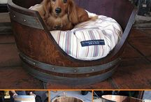 A little bit of doggy DIY / Dog It Yourself