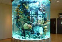 ☆~[Akváriumok]~☆