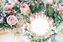 Bouquets and all things flowery