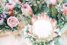 Flowers for Hana's wedding
