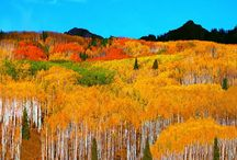 Fall in Beautiful Crested Butte