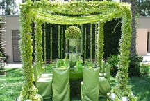 Green Weddings / Green Wedding Ideas and Inspirations