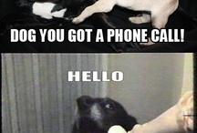 Its a Joke.. So Laugh