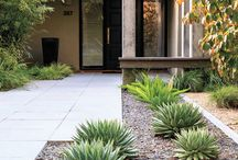 Bach landscaping ideas