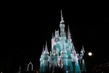 Favorite Places & Spaces / Disney World