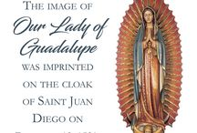 Our Lady of Guadalupe / 0