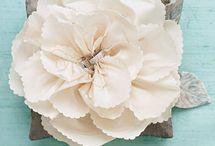 Flower Girls & Ring Bearers  / Flower Girl and Ring Bearer Ideas and Inspirations