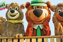 Yogi Bear Delaware Beaches
