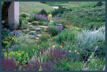 Saxil Grove Garden