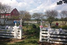 Belle Grove's Landscape / See the beauty that surrounds Belle Grove