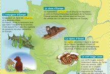 Parler de Écologie et nature