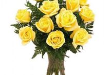 Flower Shops in Noida Online with Free Shipping