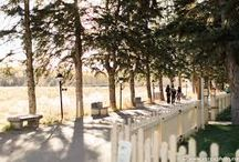 Weddings in the Park