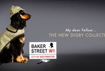 Digby Collection