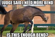 Dressage and Horse quotes etc