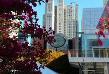 Oracle Open World 2013