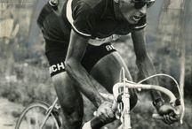Bicletas / Tablero sobre  biciletas,  accesorios,  ciclismo, etc..