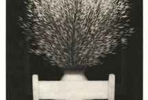 ROBERT KIPNISS / by Shadiah Ink