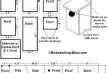 Bird house designs