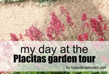 New Mexico Garden Tours / Landscape Design and Garden Design in New Mexico, in particular Albuquerque, Placitas, Corrales, Santa Fe, Taos. Check out all the wonderful gardens and landscapes of the southwest.