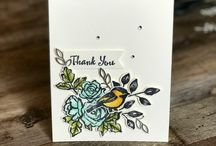 Occasions stampin up