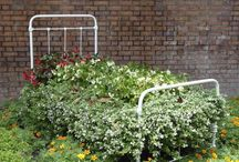 Flower Beds * Flowers in Bicycles / by Nancy Lavigne