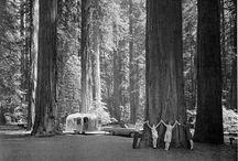 California :: Trip