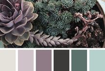 color palettes / color palettes for design