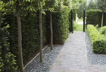 zahrada inspirace