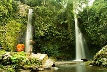 Famous Tourist  / by Jackysan Lombok