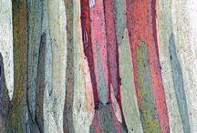 Aqua coulées de couleurs