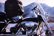 rider / roadster.