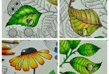 Colouring techniques and inspiration