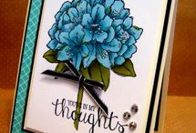 A Best Thoughts SU / by Beverley Berthold