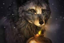 Dreaming Of The Wolf...